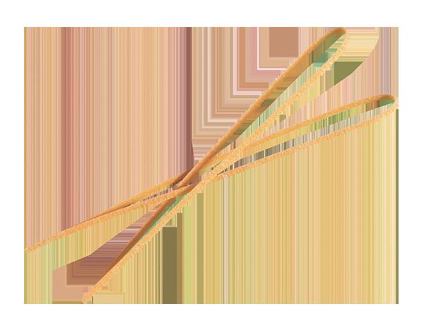tagliolino-scont-web
